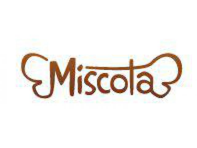 Veta online de comida y productos para mascotas | MISCOTA