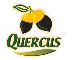 QUERCUS. Venta de jamones ibéricos online
