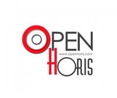 Bazar online con miles de productos variados | Openhoris